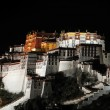 Night scenes of Potala Palace in Tibet — Stock Photo