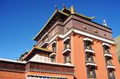 Tibet rahipleri — Stok fotoğraf