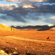 Landscape in Tibet — Stock Photo