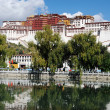 landmark of the famous potala palace in tibet — Stock Photo