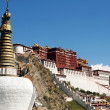 Landmark of the famous Potala Palace in Lhasa Tibet — Stock Photo #10581153
