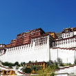 Landmark of the famous Potala Palace in Lhasa Tibet — Stock Photo #10641129