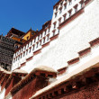 Landmark of the famous Potala Palace in Lhasa Tibet — Stock Photo #10641218