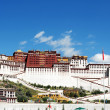 Landmark of the famous Potala Palace in Lhasa Tibet - Foto Stock