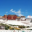 Landmark of the famous Potala Palace in Lhasa Tibet - Stok fotoğraf