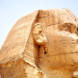 Sphinx in Cairo,Egypt — Stock Photo