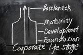 Corporate life stage analysis — Stock Photo