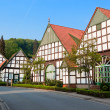 Houses in village of Germany — Stock Photo #8629182