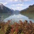 Stock Photo: Chilkoot Lake