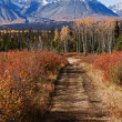 Kluane National Park — Stock Photo