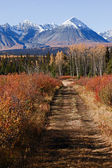 Kluane nationalpark — Stockfoto