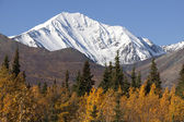 St. Elias Mountains — Stock Photo