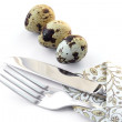 Knife and fork in a napkin with quail eggs. — Stock Photo