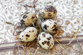 Quail eggs in the straw. — Stock Photo