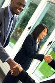 Working team shaking hands — Stock Photo