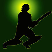 Green Gold Back Sport Silhouette - Cricket Batsman — Stock Photo