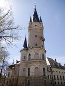 Tornet på slottet — Stockfoto