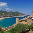 Cityscape of Tossa de Mar, Costa Brava, Spain. More in my Galler — Stock Photo #7991961