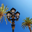 Old style street light among palm trees. — Стоковая фотография