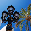 Street light and palms with luxury apartments building in backgr - Stock Photo