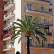 Green palm, hotel and luxury apartments in Lloret de Mar, Spain. — Stock Photo #7992977