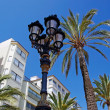 Street light and palms with luxury apartments building in backgr — Stock Photo #7992978