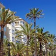 Green palms, hotels and luxury apartments in Lloret de Mar, Spai — Stock Photo
