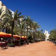 Lloret de Mar main alley on seashore. CostBrava, Spain. — Stock Photo #7992989