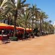 Lloret de Mar main alley on seashore. CostBrava, Spain. — Stock Photo #7992991