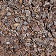 Shredded brown bark as decoration for garden. Good as background — Stock Photo