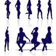 Vector silhouettes of sexy female posing with reflections. — Stock Vector