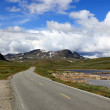 Norwegian road, situated deep in the mountains, Scandinavian Eur — Stock Photo #8108225
