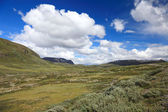 Panoramic photo of norwegian summer landscape, Scandinavian Euro — Stockfoto