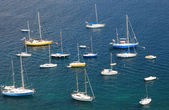 Mediterranean bay with large group of yachts. — Stock Photo
