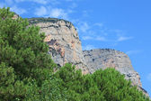 Altos acantilados y pinos como telón de fondo. — Foto de Stock