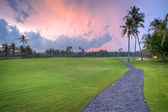 Golf field during sunset time, Bali, Indonesia. — Stock Photo