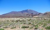 Panoramic view of volcanic desert near El Teide volcano, Tenerif — Stock Photo