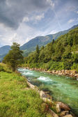 Clean mountain river in swiss Alps, Europe. — Stock Photo