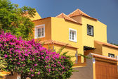 Classical spanish villa among flowers, not far from ocean. Tener — Stock Photo