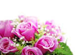 Purple roses bouquet isolated on white background. — Stock Photo