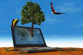 The laptop — Stock Photo