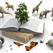 The book and the animals — Stock Photo