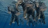 Elefant. — Stockfoto