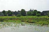 China village near the sunflower field — Stock Photo