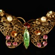 Butterfly Brooch — Stock Photo