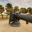 Cannon — Stock Photo #8406448