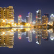 Tampa Bay Skyline — Stock Photo #8742519