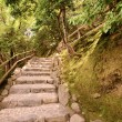 Japanese Staircase — Stock Photo