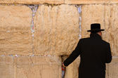 Hassidic Jew Praying — Stock Photo