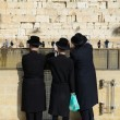 Western Wall — Stock Photo #9270196